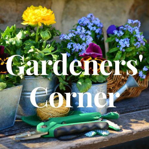Gardeners Corner (2)